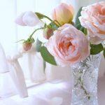 Červen patří královnám květů 7