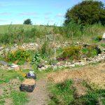 Jak zahradničit ekologicky 3