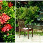 Jak využít okrasnou zahradu na maximum 5