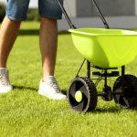 Na jaře dodejte trávníku potřebné živiny 5