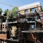 Stromový dům ze 150 rostlin 5