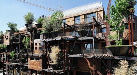 Stromový dům ze 150 rostlin 8