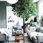 5 pokojových rostlin, které pohlcují toxiny a čistí vzduch! 7