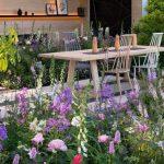 Tipy jak pečovat o rozkvetlou květinovou zahradu 8