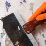 Rady nad zlato: 3 jednoduché kroky jak odstranit starou tapetu! 7