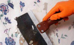 Rady nad zlato: 3 jednoduché kroky jak odstranit starou tapetu! 26