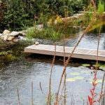Osvěžení ve vodě bez chlóru: Vytvořte jezero ke koupání 6