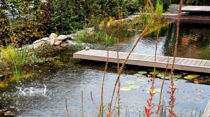 Osvěžení ve vodě bez chlóru: Vytvořte jezero ke koupání 1