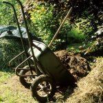 Kompost je černé zlato zahrádkáře: Co můžete kompostovat? 8