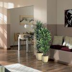 Exotická rostlinná oáza rovnou doma? Udělejte si ji i v zimě 3