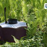 Díky pasti Biogents vás komáři v zahradě obtěžovat už nebudou 5