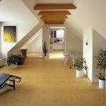 Podkrovní byt - půvabné bydlení s mnoha úskalími 3