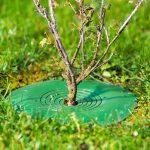 TreeGuard - Revoluční ochrana stromů 2
