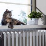 5 osvědčených rad, jak ušetřit na topení 5