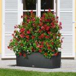 Samozavlažovací květináče a truhlíky 4
