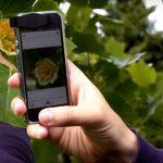Vaše zahrada v tabletu nebo telefonu 3
