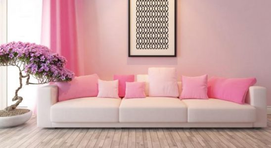 Designér radí, jak pracovat s růžovou barvou 4