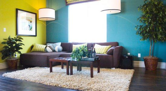 Pokud toužíte po klidném domově, vsaďte na zelenou 3