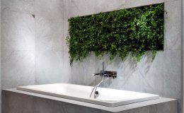 Rostliny v koupelně 30