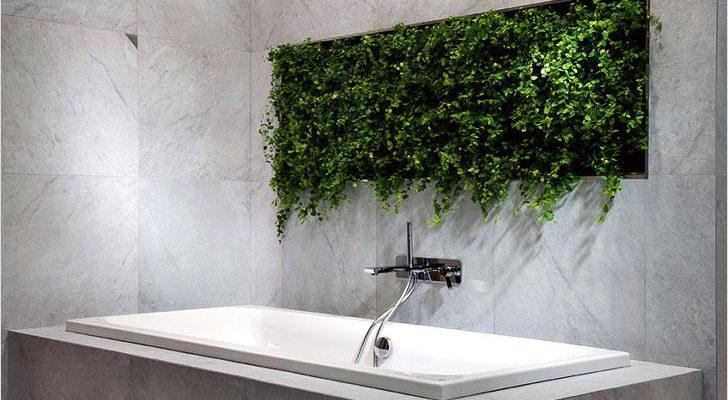 Rostliny v koupelně 1