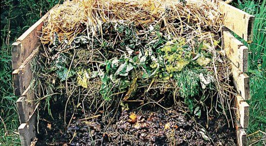 Poradíme s kompostováním během zimy (2. část) 9