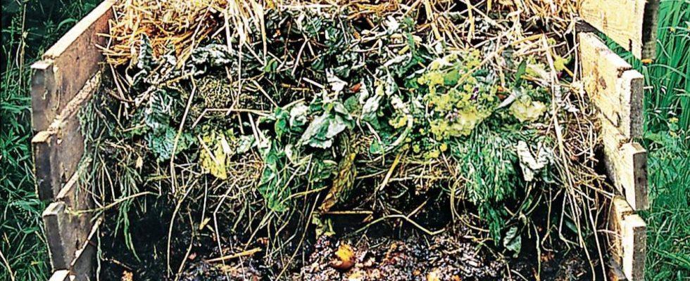Poradíme s kompostováním během zimy (2. část) 1