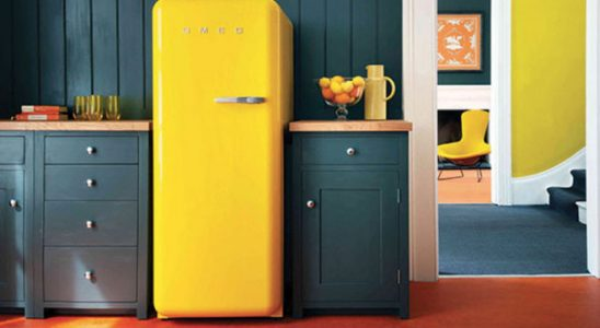 Správné čištění chladničky prodlouží její životnost 7