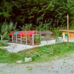 Poradíme s kompostováním během zimy (1. část) 4
